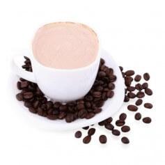 Boisson Cappuccino intense 15 g de protéines Prolinéa